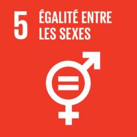 5 - Égalité entre les sexes