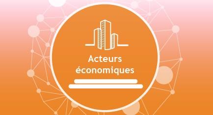 Acteurs économiques