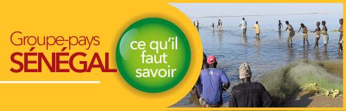 So coopération échange entre les acteur qui interviennent au Sénégal